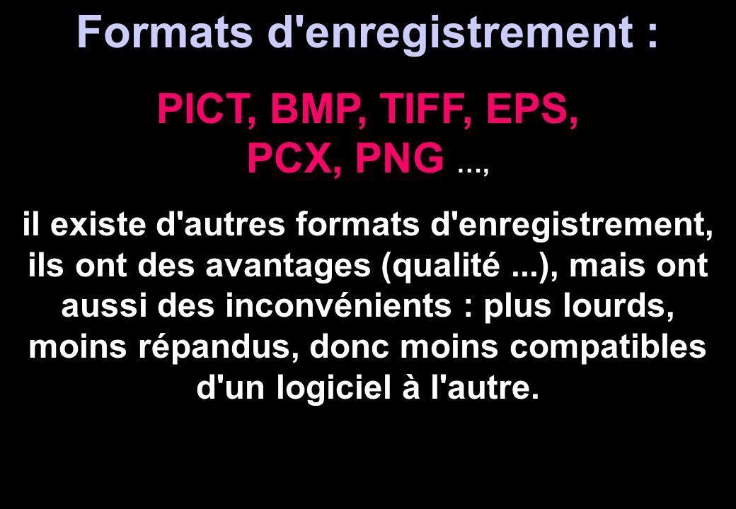 Formats d'enregistrement : PICT, BMP, TIFF, EPS, PCX, PNG …, il existe d'autres formats d'enregistrement, ils ont des avantages (qualité...), mais ont