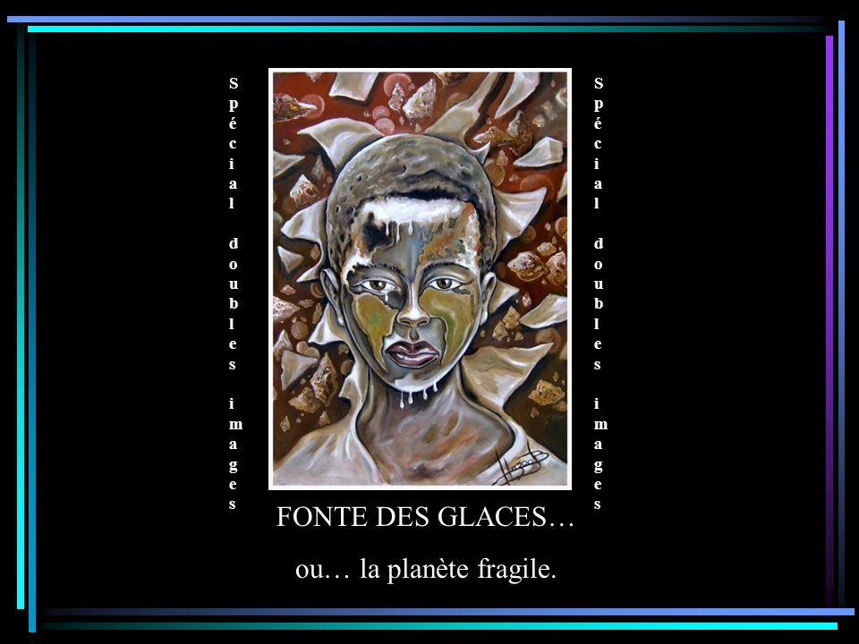 Spécial doubles images Spécial doubles images Spécial doubles images Spécial doubles images FONTE DES GLACES… ou… la planète fragile.