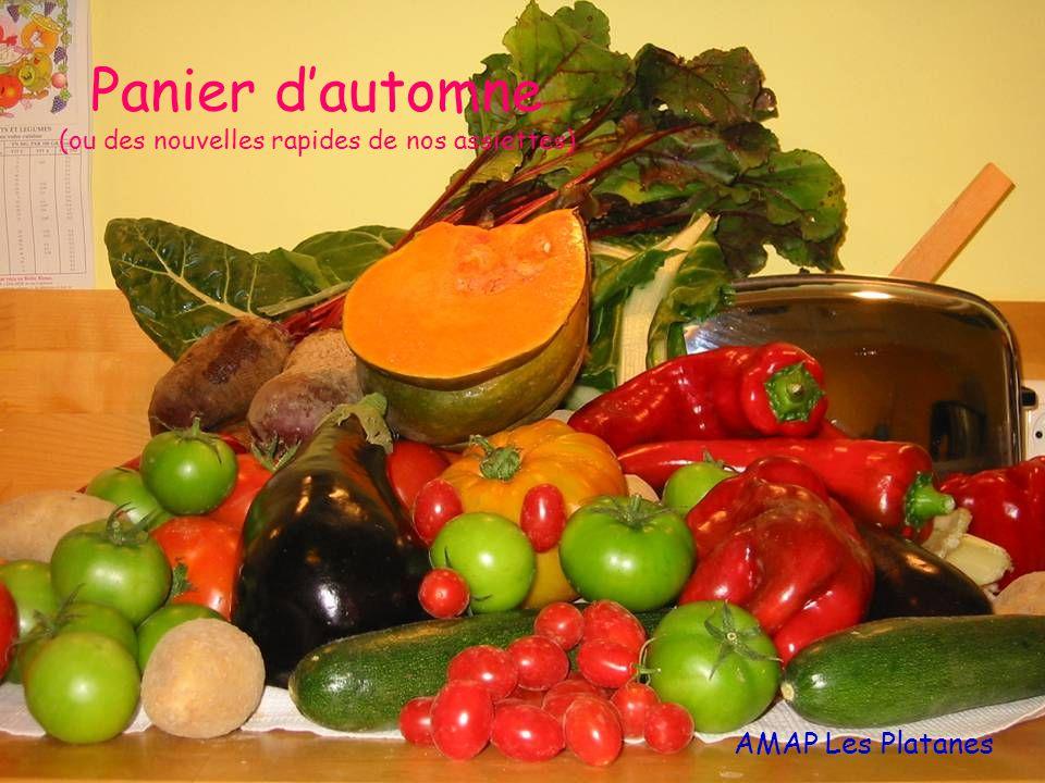 Panier d'automne (ou des nouvelles rapides de nos assiettes) AMAP Les Platanes