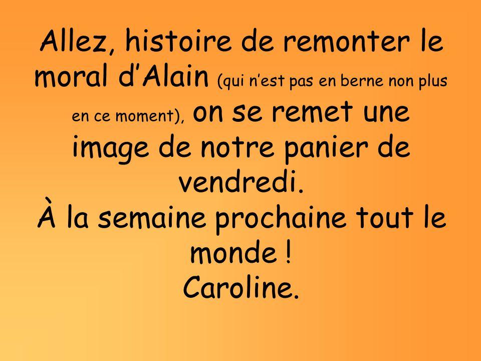 Allez, histoire de remonter le moral d'Alain (qui n'est pas en berne non plus en ce moment), on se remet une image de notre panier de vendredi.