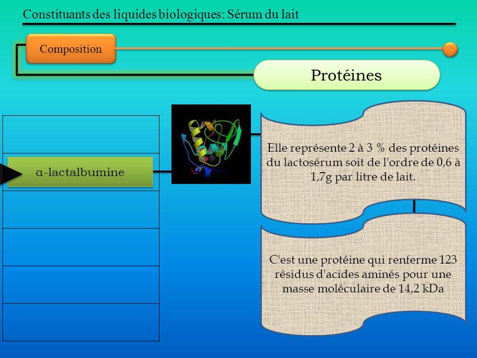 Constituants des liquides biologiques: Sérum du lait Composition Protéines α-lactalbumine Elle représente 2 à 3 % des protéines du lactosérum soit de