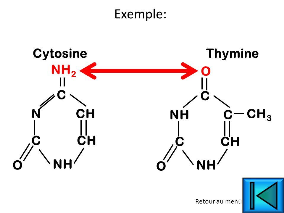 C O N C CH NH CytosineThymine C O NH C C CH NH CH 3 O NH 2 Exemple: Retour au menu