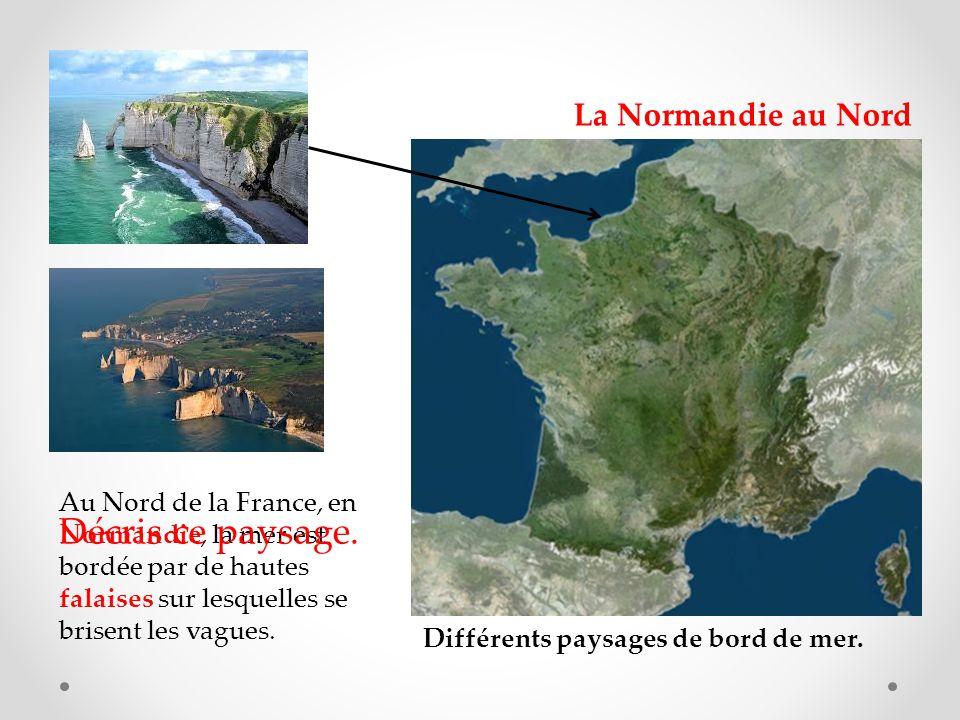 Au Nord de la France, en Normandie, la mer est bordée par de hautes falaises sur lesquelles se brisent les vagues.