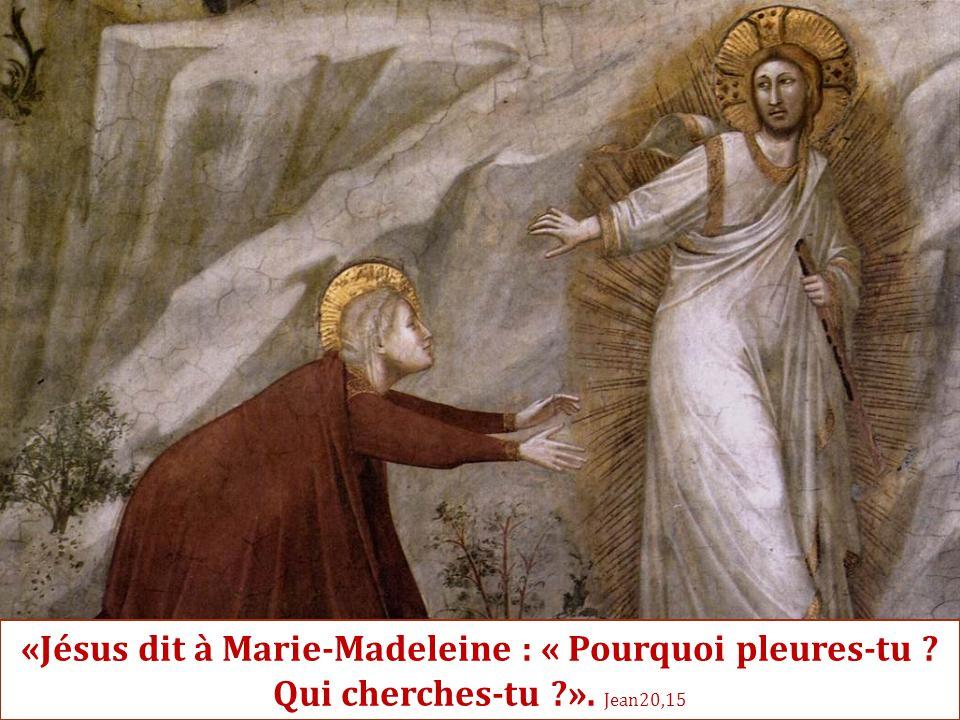 «Jésus dit à Marie-Madeleine : « Pourquoi pleures-tu ? Qui cherches-tu ?». Jean20,15