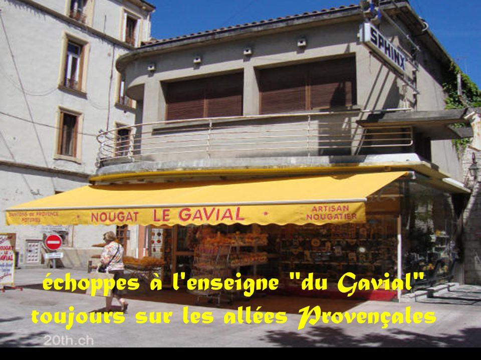 échoppes à l enseigne du Gavial toujours sur les allées Provençales
