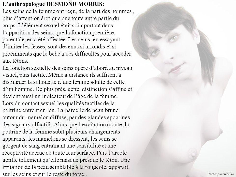 L'anthropologue DESMOND MORRIS: Les seins de la femme ont reçu, de la part des hommes, plus d'attention érotique que toute autre partie du corps.