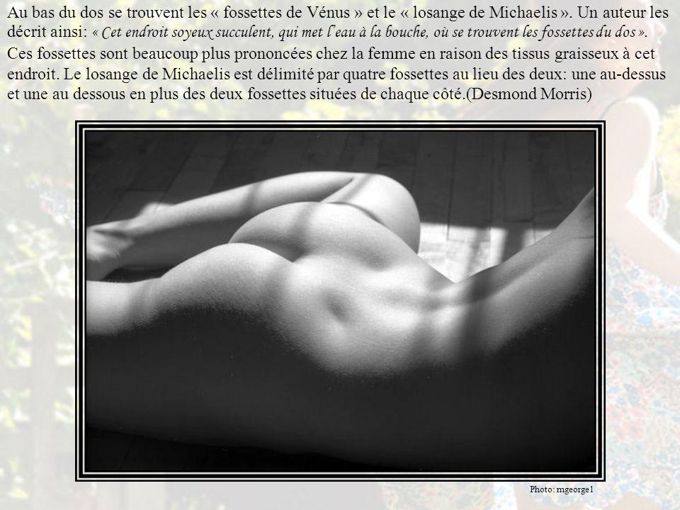 L'anthropologue DESMOND MORRIS: Le dos de la femme est plus arqué que celui de l'homme et lorsque la courbe de la colonne vertébrale est volontairemen