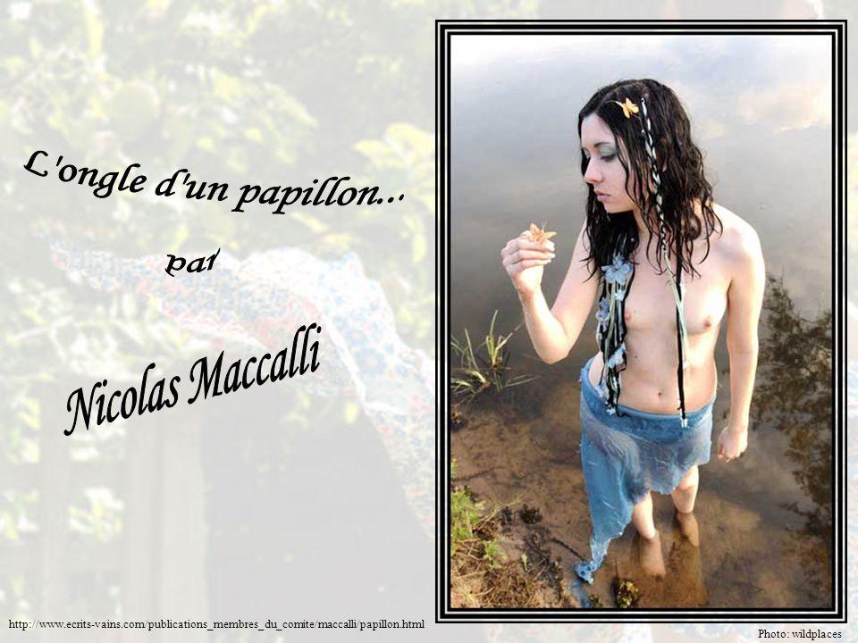 Photo: wildplaces http://www.ecrits-vains.com/publications_membres_du_comite/maccalli/papillon.html