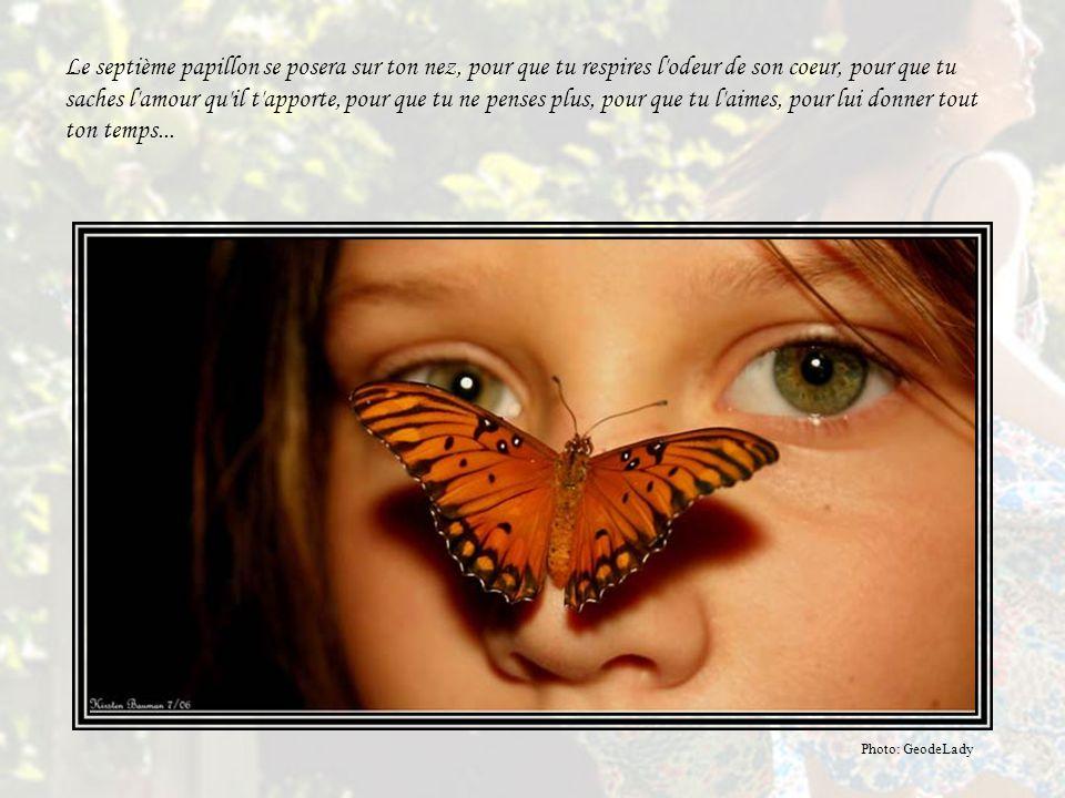 Le sixième papillon ne fera rien, il sera à part. Lui, c'est le contemplateur. Il photographie et dessine ce qu'il trouve magnifique. Lui, te sculpter