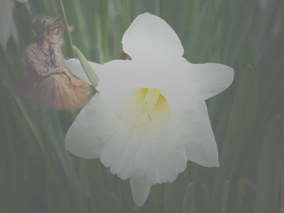 Car au feu du regard de l'autre, tout est possible: L'anéantissement OU La résurrection.