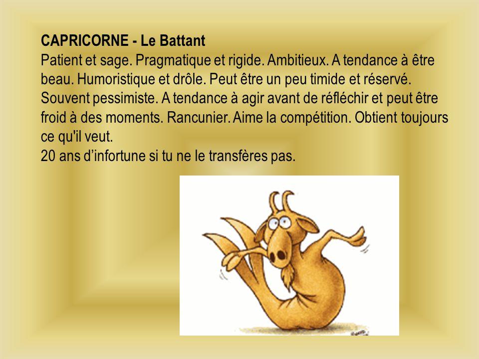 CAPRICORNE - Le Battant Patient et sage.Pragmatique et rigide.