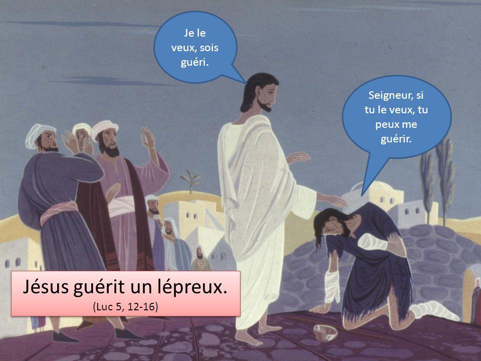 Jésus guérit un lépreux. (Luc 5, 12-16) Jésus guérit un lépreux. (Luc 5, 12-16) Seigneur, si tu le veux, tu peux me guérir. Je le veux, sois guéri.