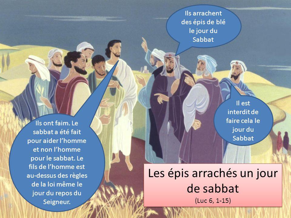 Les épis arrachés un jour de sabbat (Luc 6, 1-15) Les épis arrachés un jour de sabbat (Luc 6, 1-15) Il est interdit de faire cela le jour du Sabbat Ils arrachent des épis de blé le jour du Sabbat Ils ont faim.