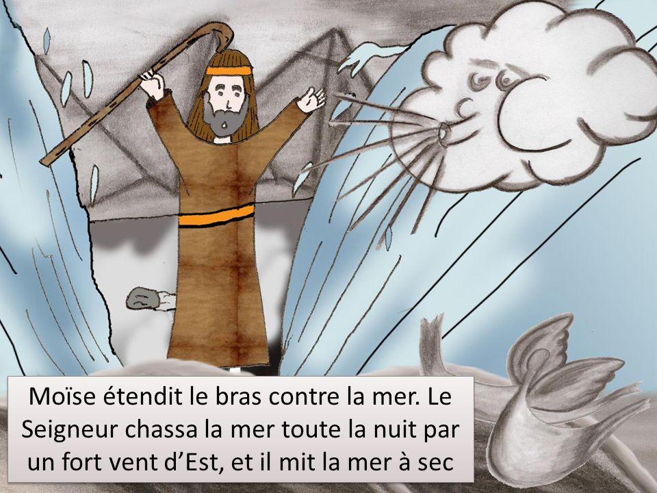 Moïse étendit le bras contre la mer.