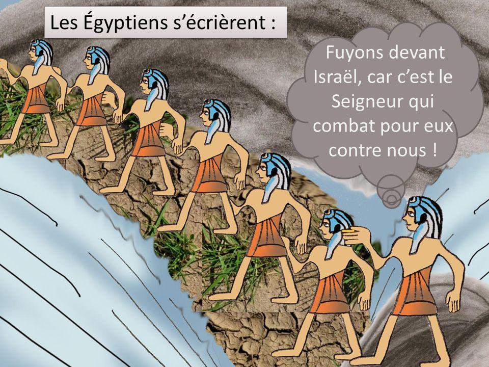 Les Égyptiens s'écrièrent : Fuyons devant Israël, car c'est le Seigneur qui combat pour eux contre nous !