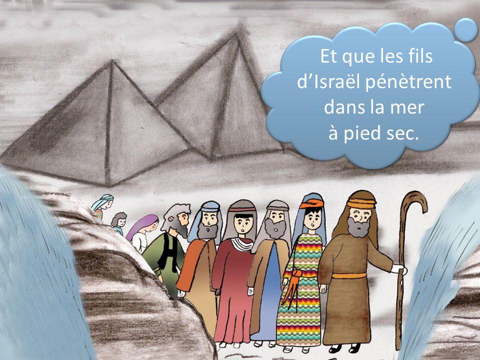 Et que les fils d'Israël pénètrent dans la mer à pied sec.