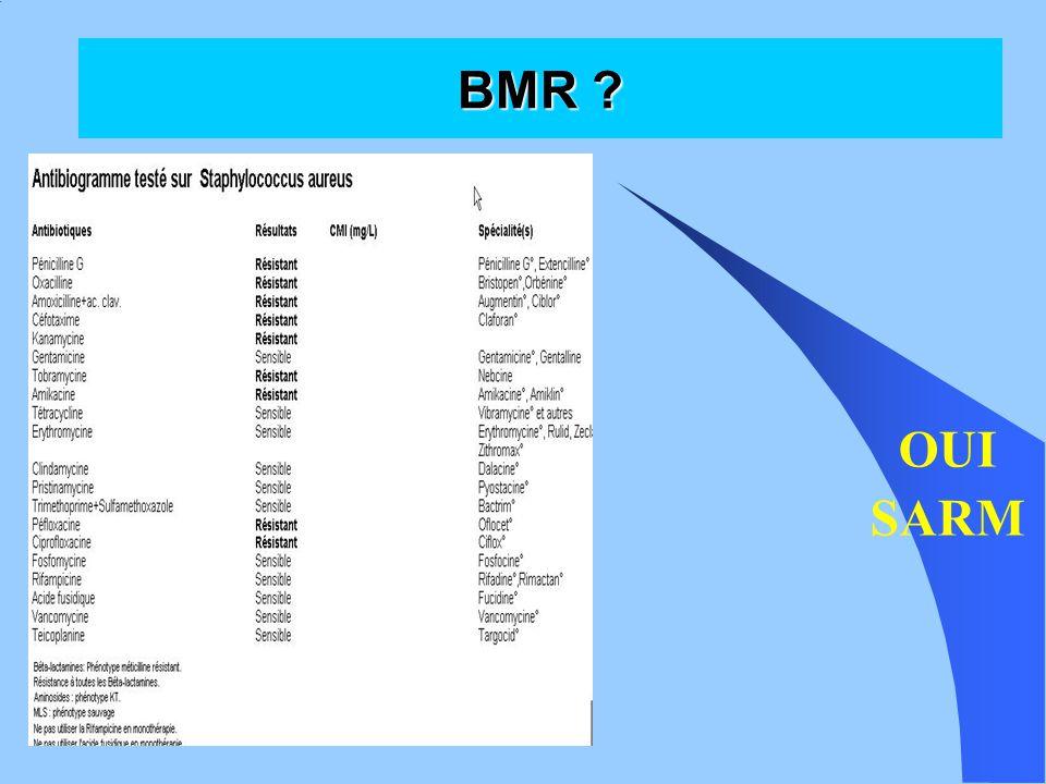 Conclusion BMR ne sont plus « que des germes hospitaliers » Ne pas traiter systématiquement toute BMR mise en évidence différence entre colonisation et infection Bon usage des antibiotiques pour éviter de sélectionner des BMR et des BHRe Hygiène pour éviter la dissémination des BMR