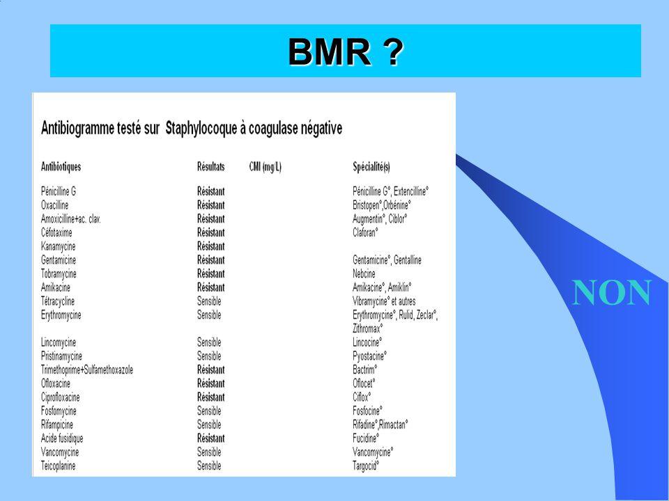 BMR ? BHRe  EPC (enterobacterie productrice de carbapenèmase)