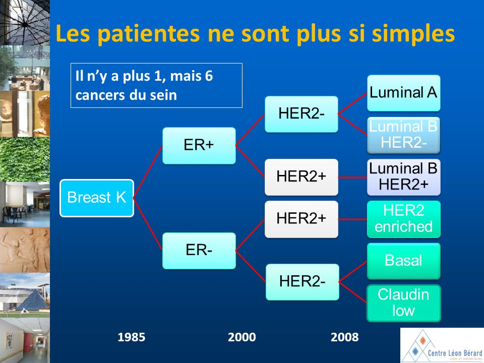 Il n'y a plus 1, mais 6 cancers du sein Breast KER+HER2-Luminal A Luminal B HER2- HER2+ Luminal B HER2+ ER-HER2+ HER2 enriched HER2-Basal Claudin low
