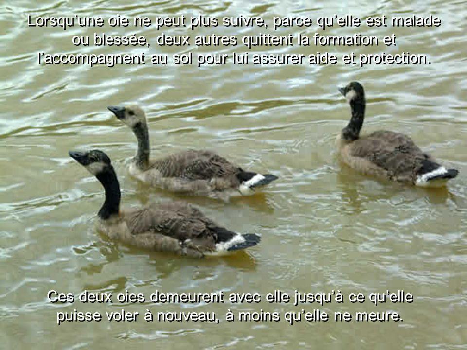 Si nous sommes à l'arrière, il est important que nos « cris » transmettent un message qui soit encourageant.