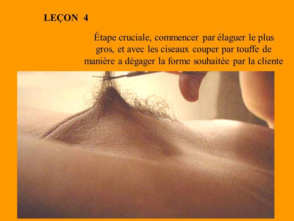 Étape cruciale, commencer par élaguer le plus gros, et avec les ciseaux couper par touffe de manière a dégager la forme souhaitée par la cliente LEÇON