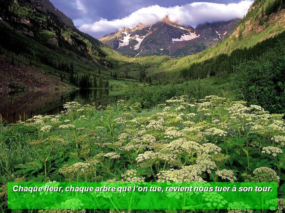 Chaque fleur, chaque arbre que l'on tue, revient nous tuer à son tour.