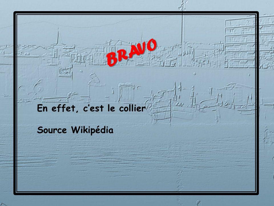 Aloyau Paleron Flanchet Collier Entrecôte Côte Filet Bavette Hampe Tendron Plat de côtes Poitrine gîte Quel est le nom de ce morceau