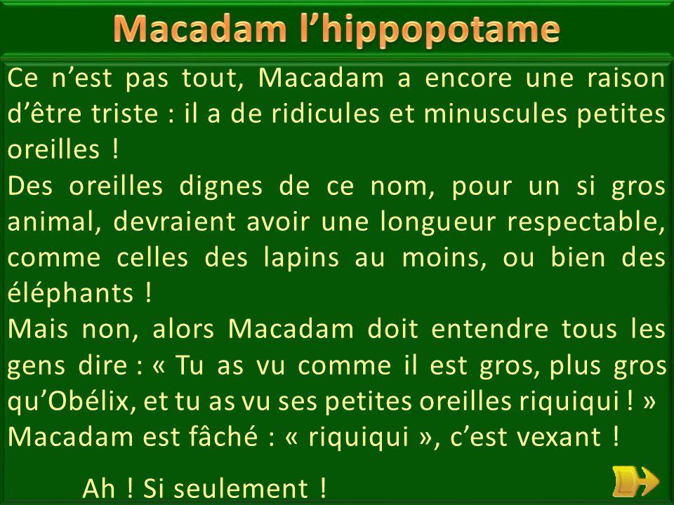 04 Macadam l'hippopotame n'est pas heureux. Tout le monde dit qu'il est très lourd, et très gros .