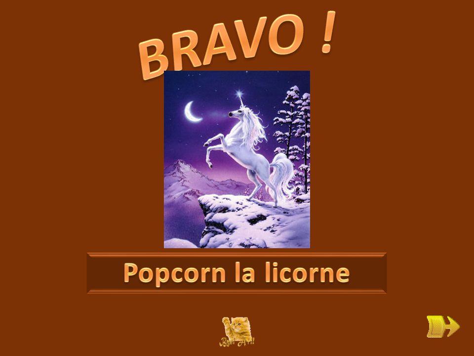 Q Qui est Popcorn . ok 1 1 Pourquoi ronchonne-t-elle .