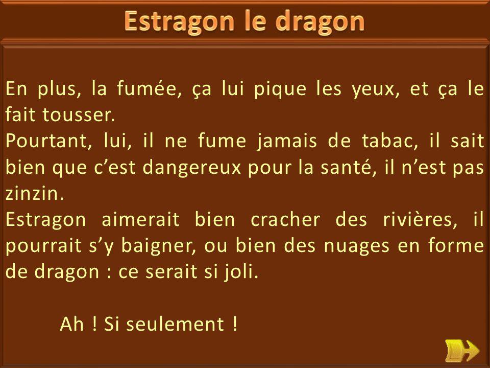 09 Estragon le dragon est déprimé. Il veut changer de vie.