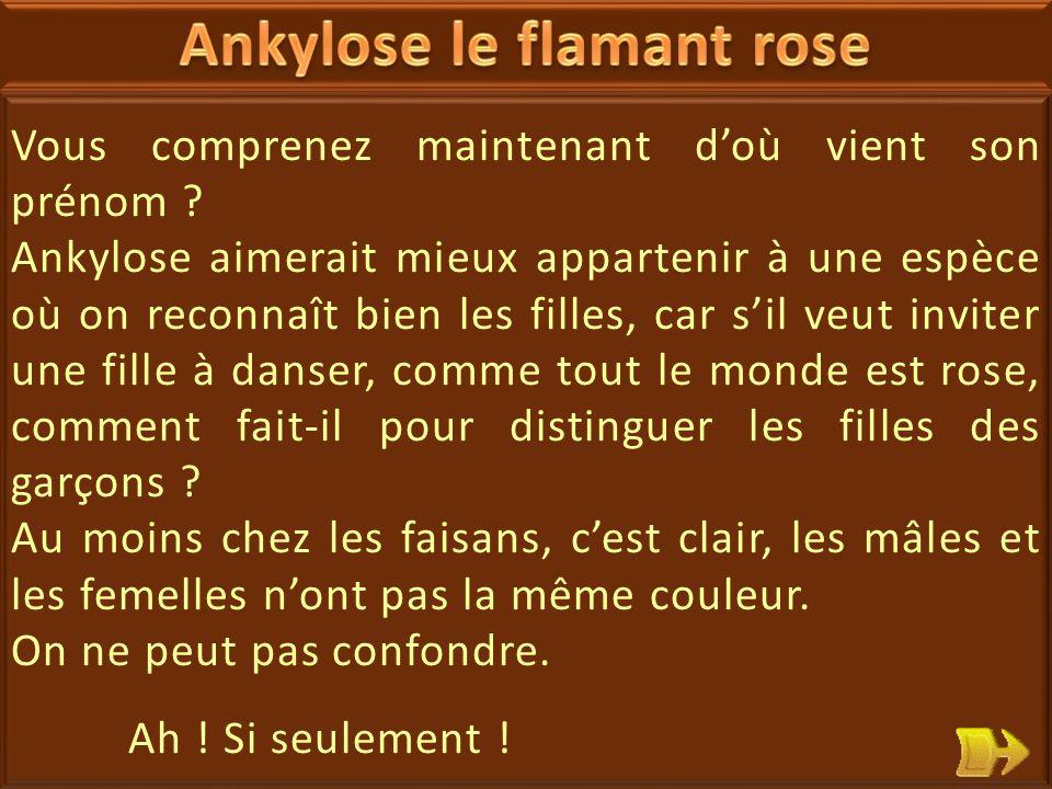 11 Ankylose le flamant rose est démoralisé : il ne veut plus être tout rose, rose c'est une couleur de fille .
