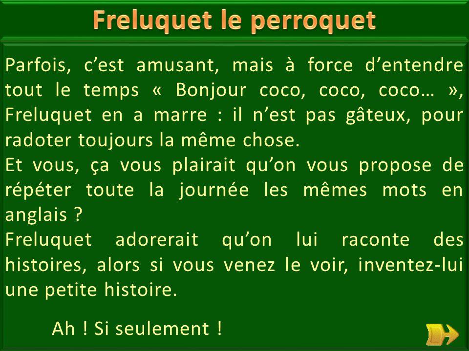 14 Freluquet est grincheux.