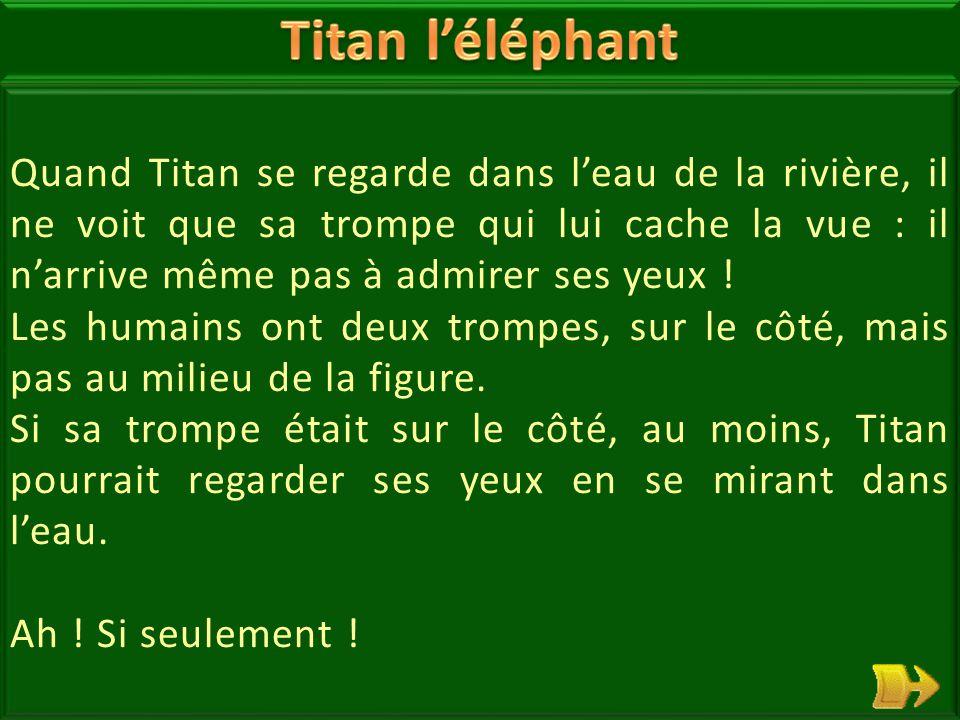 18 Titan l'éléphant sait bien que sa trompe est très pratique : elle sert à se doucher, attraper la nourriture, déraciner des arbres : elle a beaucoup de force .