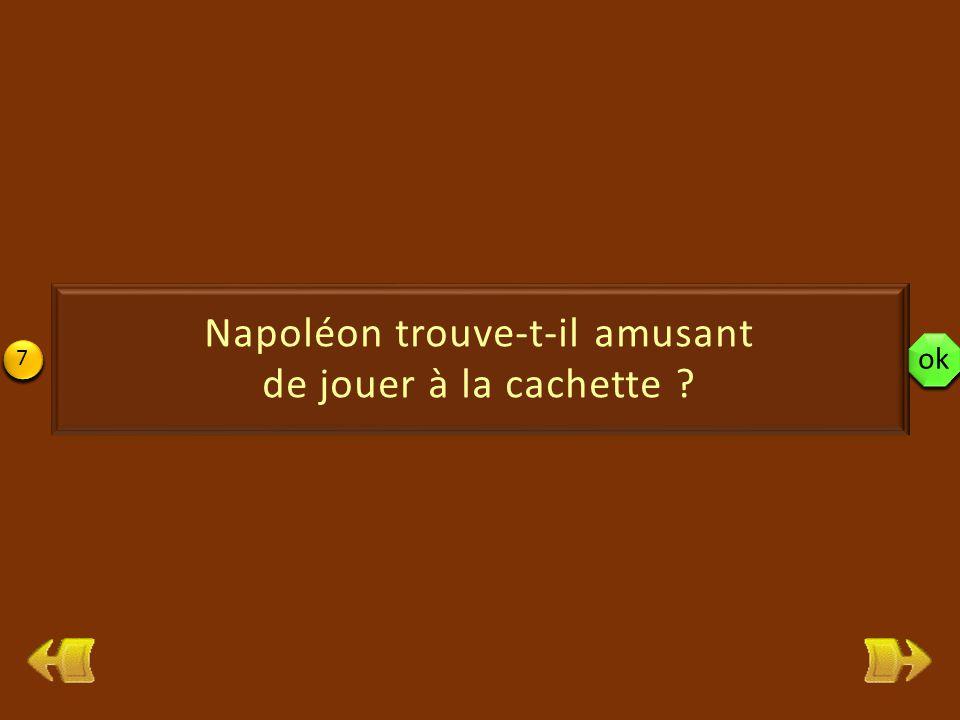 19 Si Napoléon gardait toujours la même couleur, il choisirait d'être tout rose, comme les flamants roses.