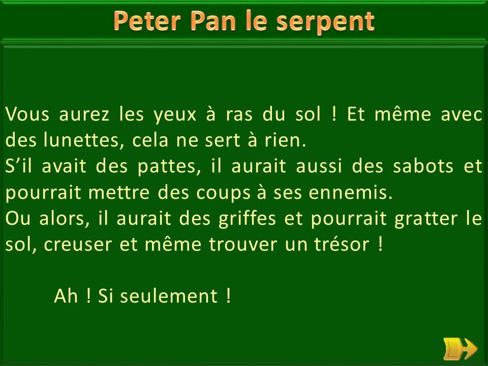 20 Peter Pan le serpent rêvait d'avoir des pattes.