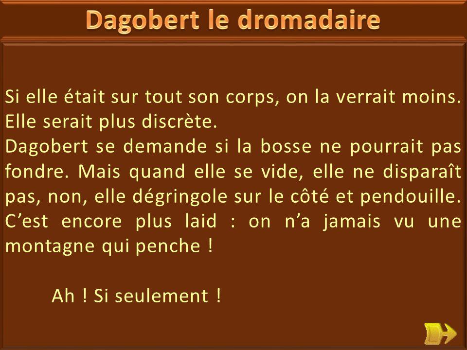 25 Dagobert le dromadaire n'est pas content, il n'aime pas la bosse qui se situe sur son dos.