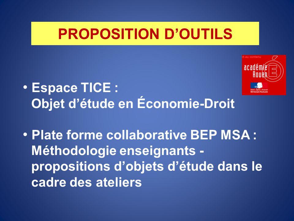 Espace TICE : Objet d'étude en Économie-Droit Plate forme collaborative BEP MSA : Méthodologie enseignants - propositions d'objets d'étude dans le cad