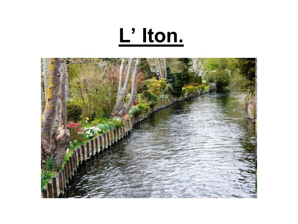 Emplacement géographique L'Iton est une rivière normande ayant un bassin de 1300 km² s'étendant sur 132 km traversant le département de l'Eure et celui de l'Orne.
