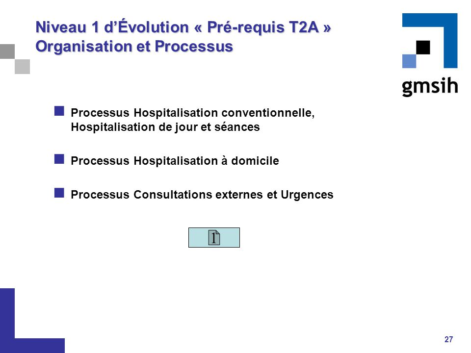 27 Niveau 1 d'Évolution « Pré-requis T2A » Organisation et Processus Processus Hospitalisation conventionnelle, Hospitalisation de jour et séances Pro