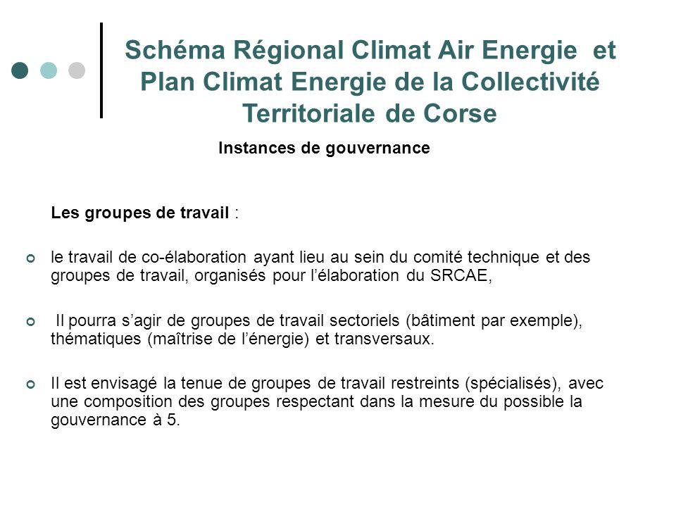 Schéma Régional Climat Air Energie et Plan Climat Energie de la Collectivité Territoriale de Corse Instances de gouvernance Les groupes de travail : l