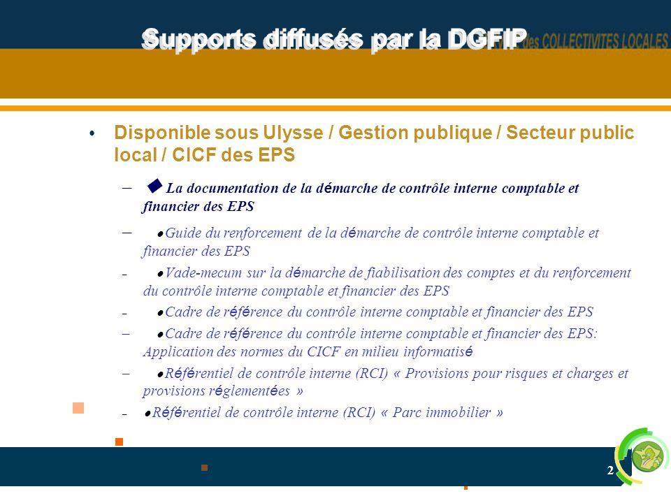 3 Supports diffusés par la DGFIP –  La documentation sur le pilotage de la d é marche de contrôle interne comptable et financier – Les comptes-rendus des groupes de travail  Cartographie des risques et é chelle de maturit é de la gestion des risques (EMR)  « Parc immobilier »  Provisions et engagements hors bilan