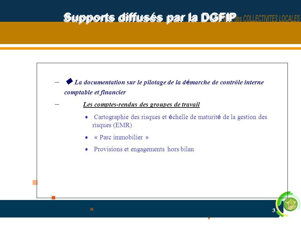 3 Supports diffusés par la DGFIP –  La documentation sur le pilotage de la d é marche de contrôle interne comptable et financier – Les comptes-rendus