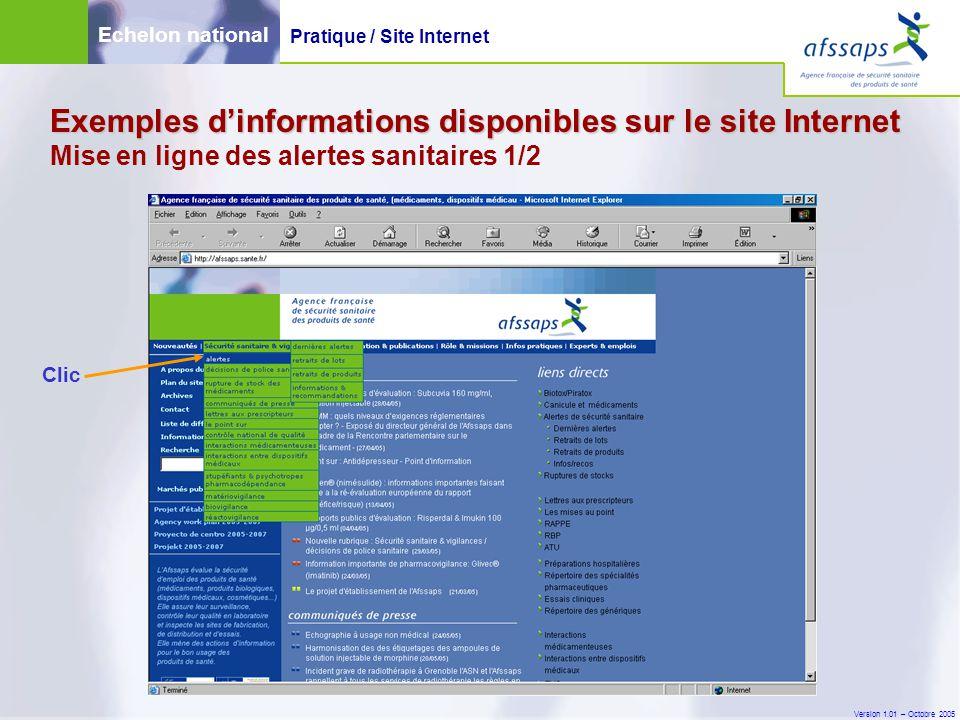 Version 1.01 – Octobre 2005 Exemples d'informations disponibles sur le site Internet Exemples d'informations disponibles sur le site Internet Mise en