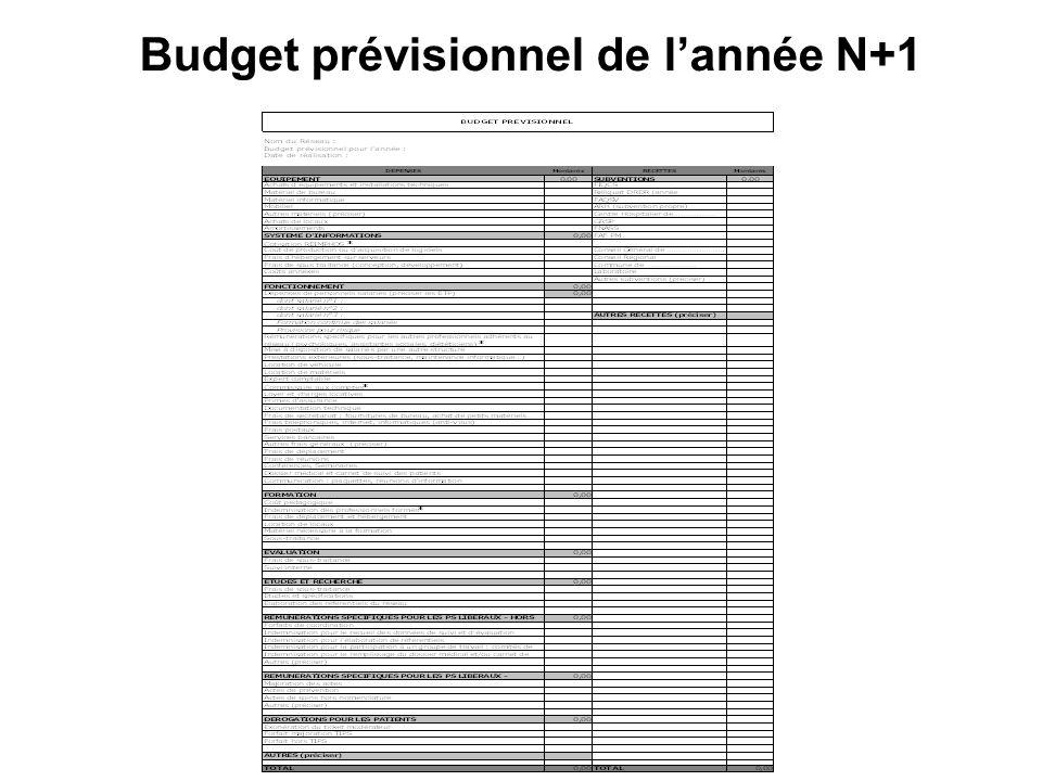 Budget prévisionnel de l'année N+1