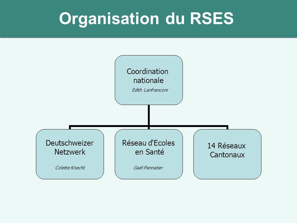 Organisation du RSES