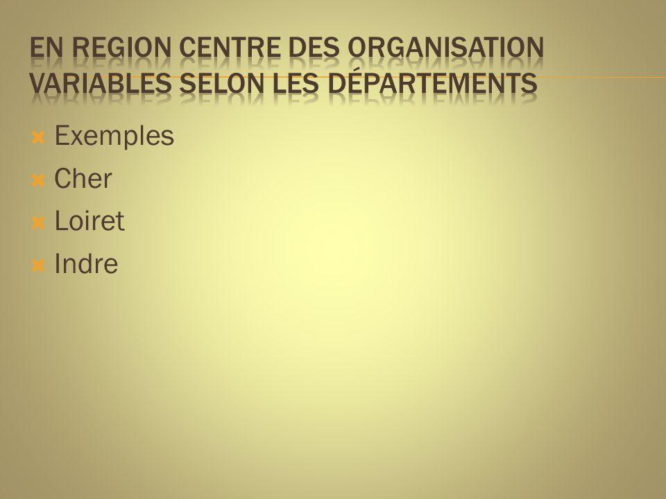  15 Coordinations gérontologiques locales  1 Coordination gérontologique départementale, créée en 2002  1 expérimentation sur 2 ans ( 2009-2010) pour la mise en place d'un MAIA à Vierzon