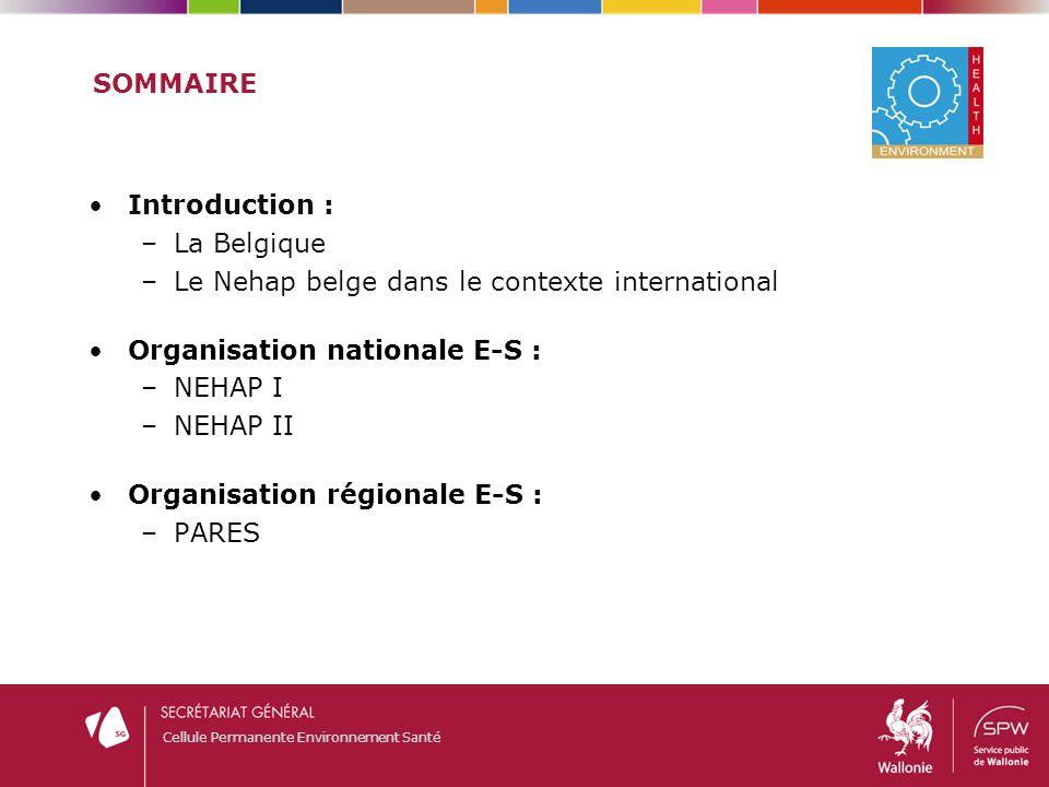 Cellule Permanente Environnement Santé SOMMAIRE Introduction : –La Belgique –Le Nehap belge dans le contexte international Organisation nationale E-S