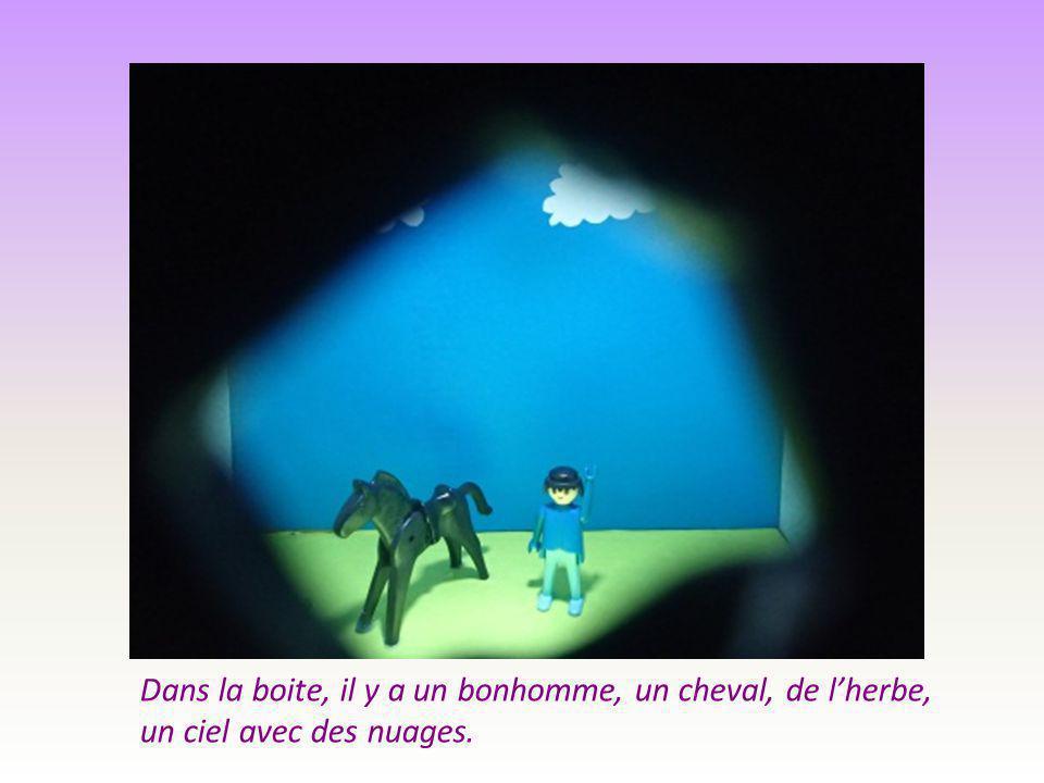 Dans la boite, il y a un bonhomme, un cheval, de l'herbe, un ciel avec des nuages.