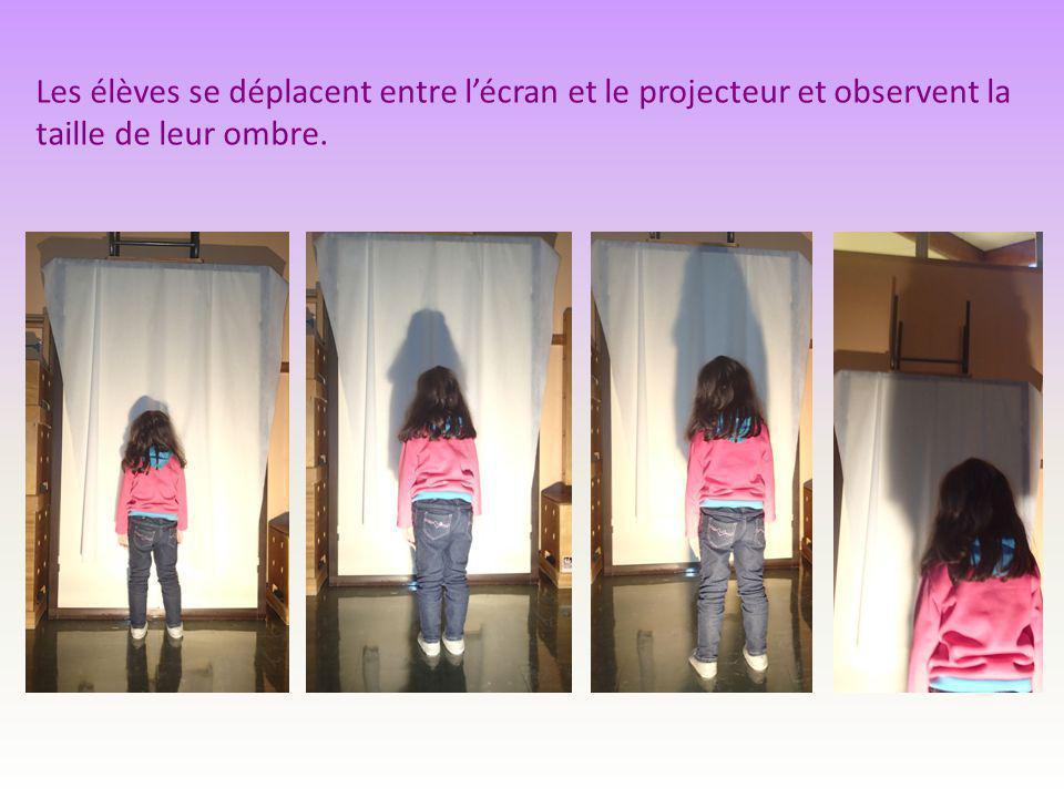 Les élèves se déplacent entre l'écran et le projecteur et observent la taille de leur ombre.