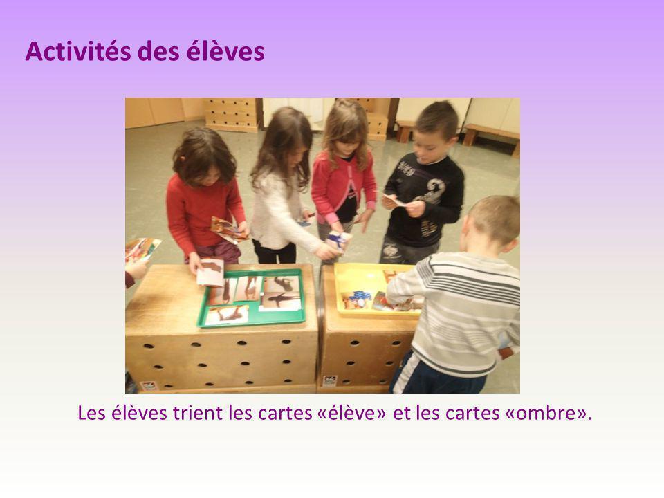 Activités des élèves Les élèves trient les cartes «élève» et les cartes «ombre».